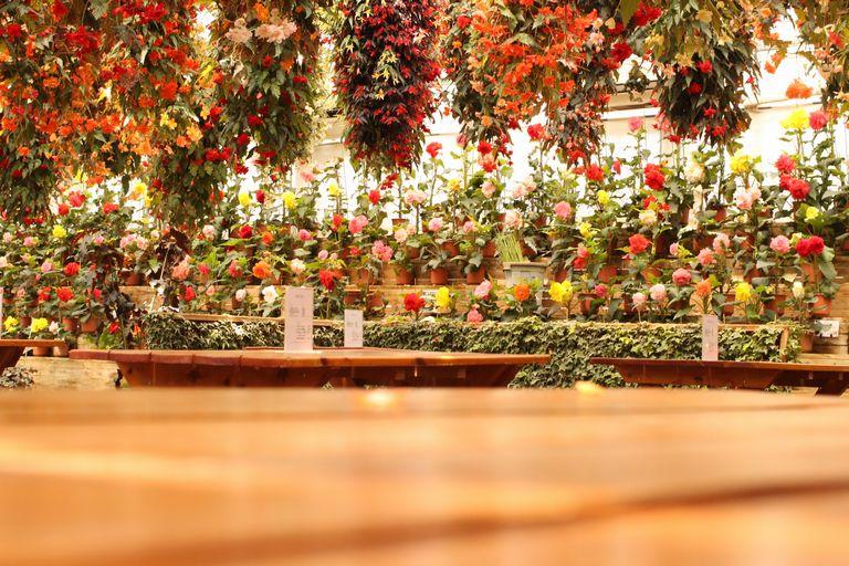 花いちもんめの飲食スペース