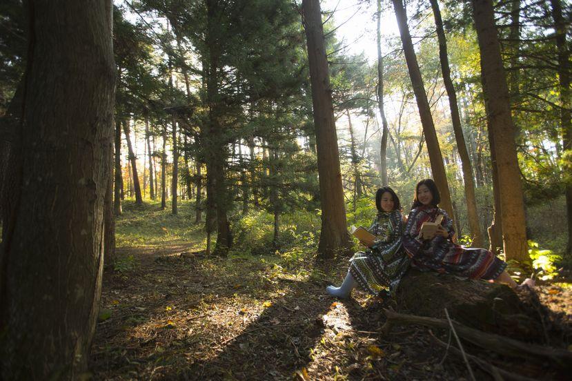 雨でも楽しめる日光・鬼怒川の観光スポット!誰もが楽しめる魅力をご紹介