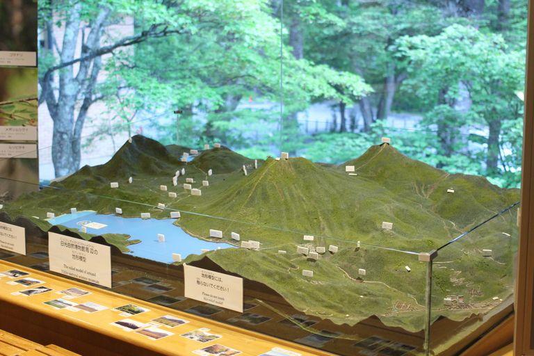日光自然博物館のジオラマ