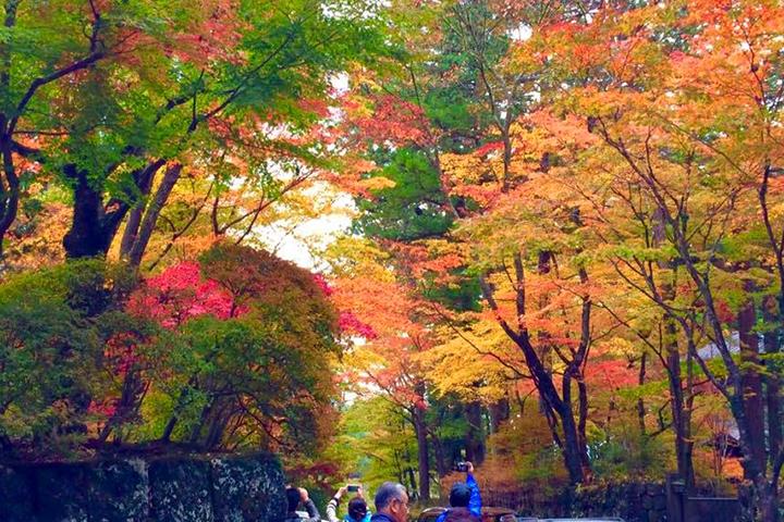 華蔵院の坂の紅葉