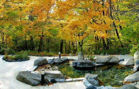 観光の合間に立ち寄れる日光周辺のおすすめ日帰り温泉