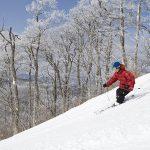 【2020年版】軽井沢でおすすめのスキー場・時期・特徴とは?
