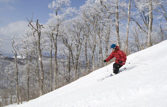 冬の軽井沢でスキーを楽しもう!おすすめスキー場・時期・特徴とは?