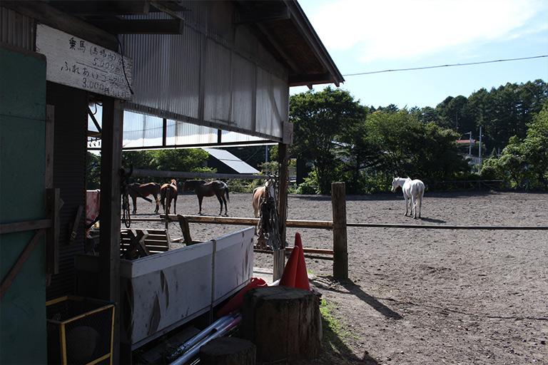 土屋乗馬クラブ