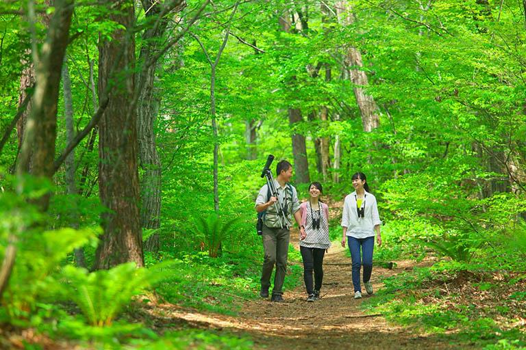 国設軽井沢野鳥の森