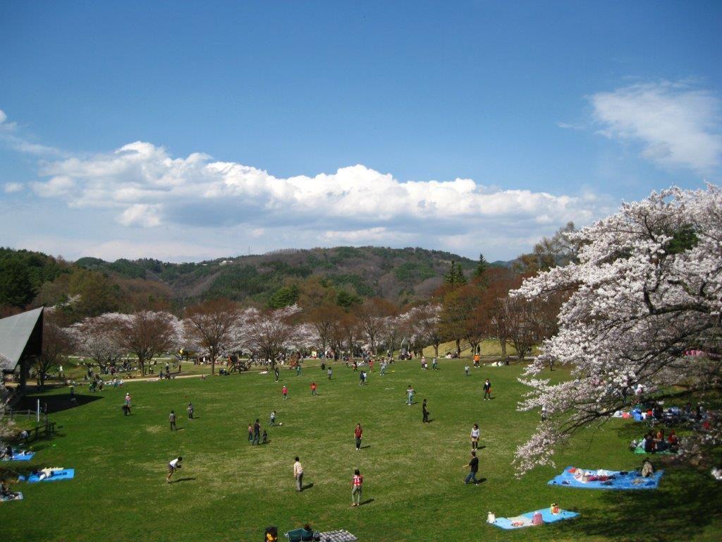 壮観な風景に圧倒される、松本市で絶景が見られるスポット4選