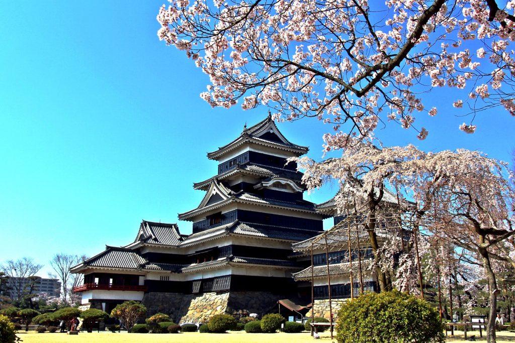 【2020年版】松本市内で桜を見るならここ!おすすめの名所・見頃をご紹介