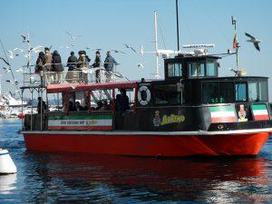 熱海遊覧船 SANREMO