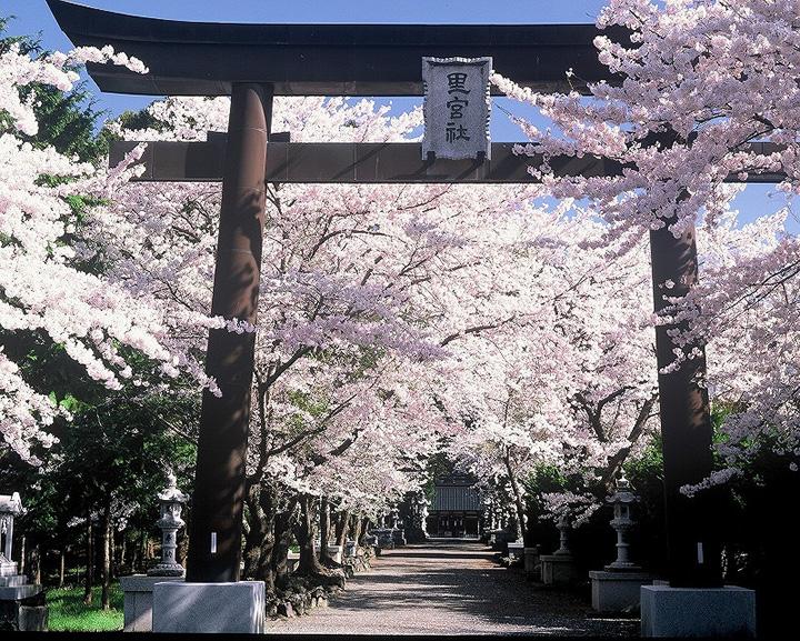 冨士御室浅間神社(ふじおむろせんげんじんじゃ)