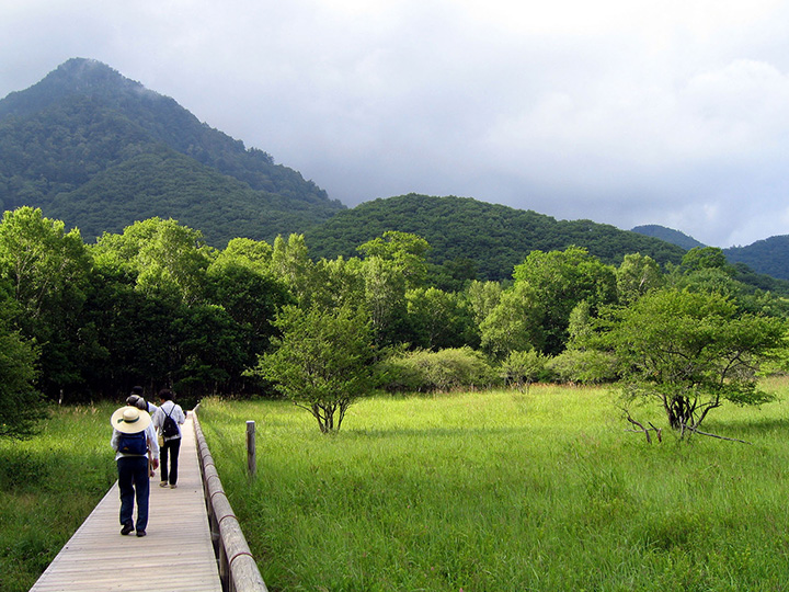 木道が整備されているので、快適にハイキングを楽しめます。