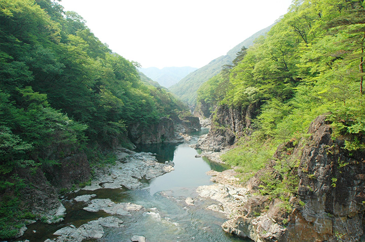 巨岩と清流、変化に富んだ景観の龍王峡