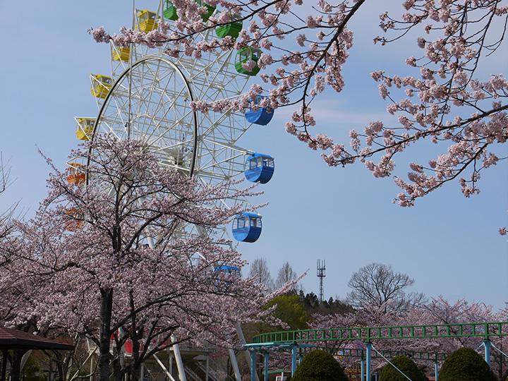 八戸(はちのへ)公園
