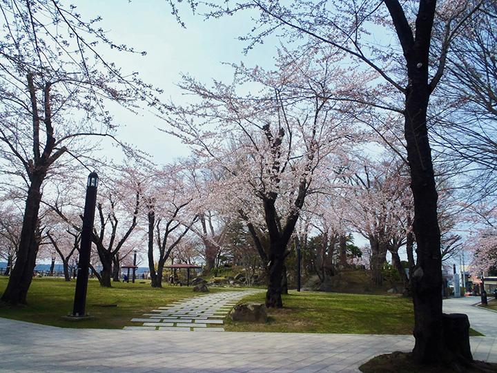 三八城(みやぎ)公園