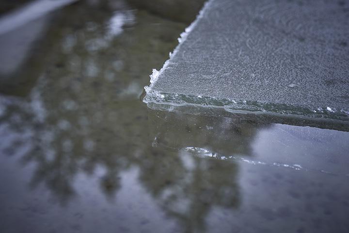 氷の厚みが13〜15cmほどになったら切り出すタイミング