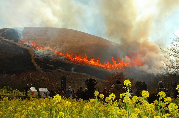 700年以上の歴史を持つ大室山の山焼き