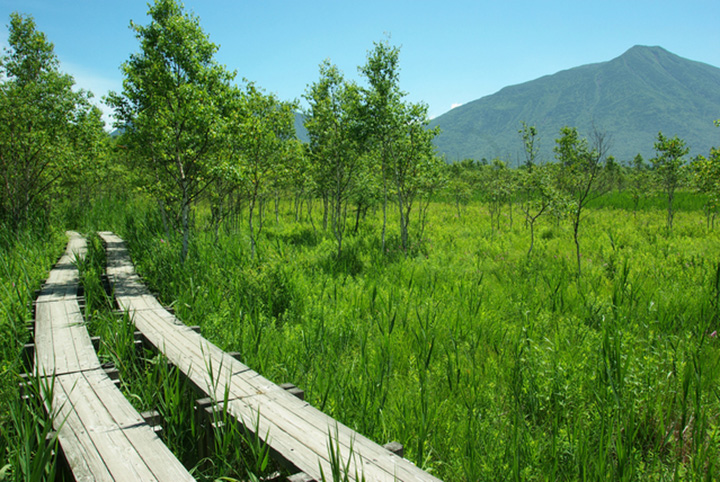 広大な湿原ハイキングが楽しめる、戦場ヶ原