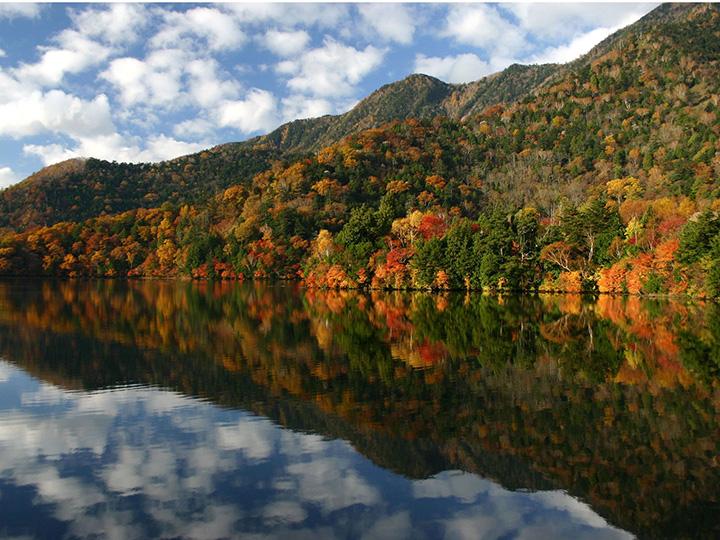 原生林と出会える奥日光の自然の宝庫、湯ノ湖