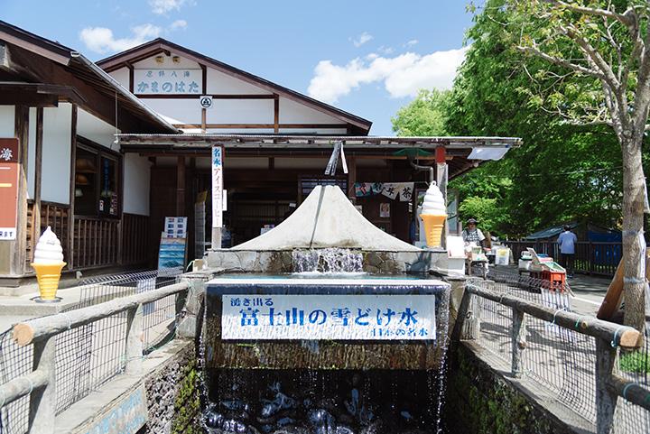 湧き出る富士山の雪解け水は、全国名水百選に選定されています。