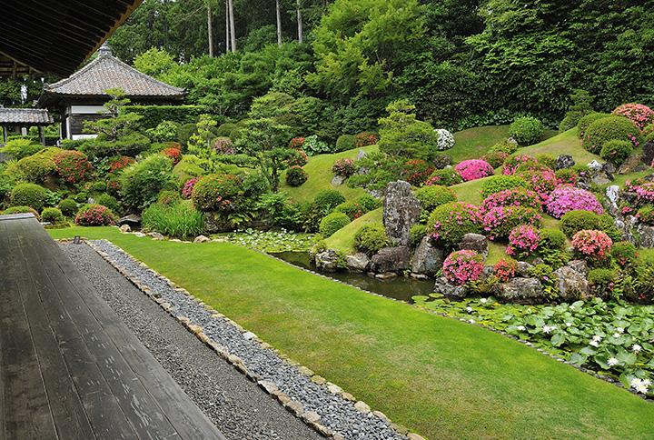 本堂の北側に江戸時代初期築かれた池泉観賞式庭園