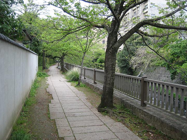 道沿いには文学者・医学者として知られる木下杢太郎の文学碑が立っています