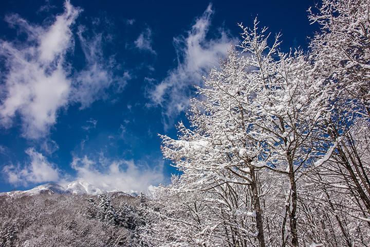 八ヶ岳・清里・小淵沢エリアの冬(12~2月)の気温・服装について