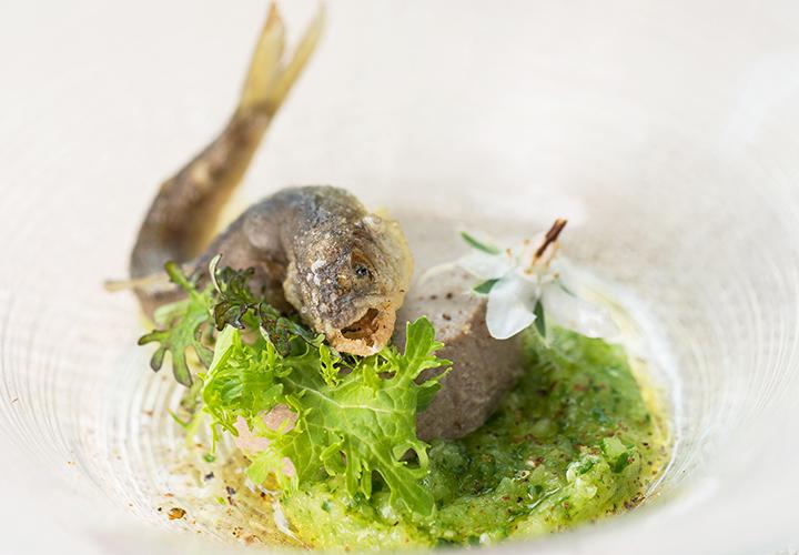 天竜川・稚鮎のフリット 望月・古太きゅうりとエストラゴン。ディナーコース前菜の一例