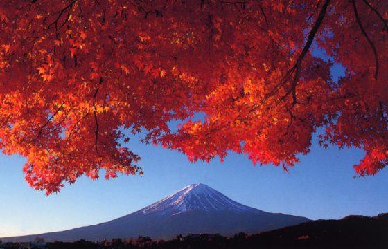 富士山と紅葉の絶景を楽しむ秋の河口湖 おすすめ8選