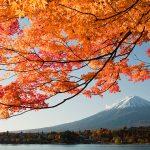 箱根(箱根湯本・仙石原)の気温と服装をチェックしよう