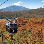 秋の箱根で愛でる厳選紅葉スポット12選