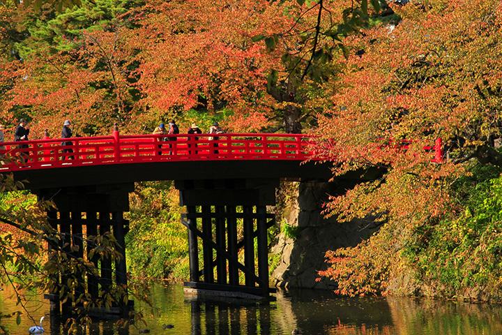 弘前城の紅