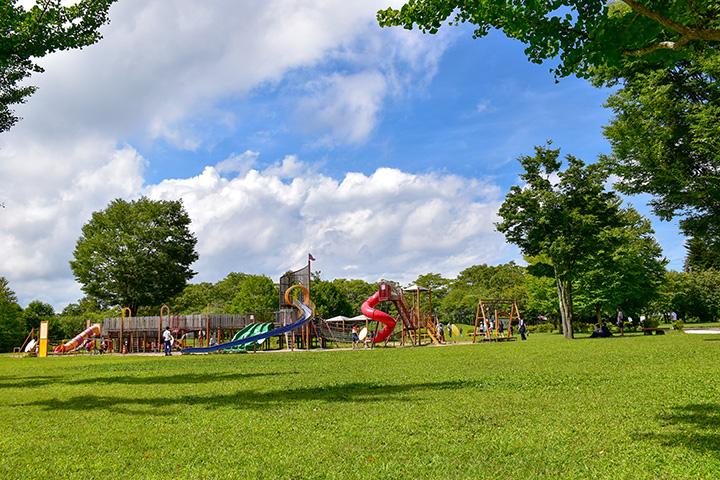 3~6歳の幼児ゾーン、6~12歳の児童ゾーン、ユニバーサルゾーン、フィットネスゾーンからなる大型遊具