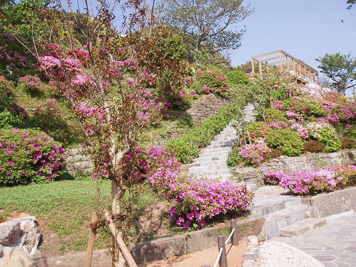 平戸港から市街の町並みまでを一望でき、ヒラドツツジの名所としても有名な崎方公園