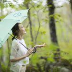 雨が降っても安心! 八戸・十和田・奥入瀬の屋内で遊べる観光スポット