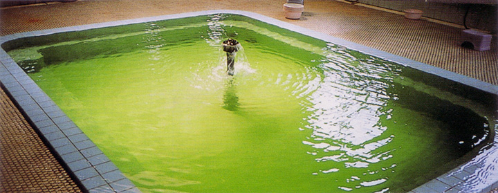 エメラルド色のお湯は、夜に見られることが多い