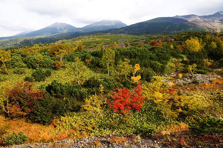 早く訪れる紅葉と冠雪の山々はさらに美しい
