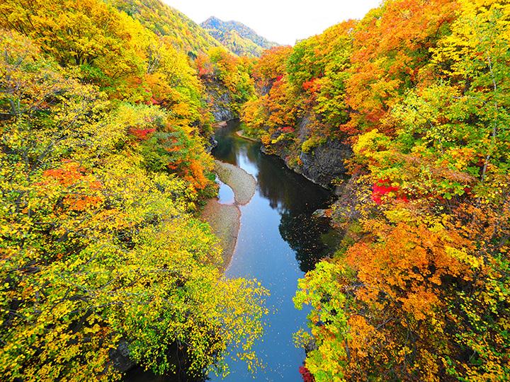 定山渓 錦橋の紅葉