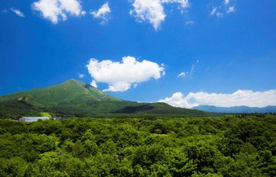 会津地方(会津若松・磐梯・猪苗代湖)の気温・服装を知っておこう