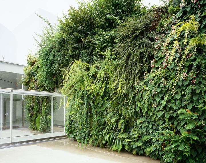 厚さわずか14cmの壁の両面に、金沢の気候に適した約100種の植物が