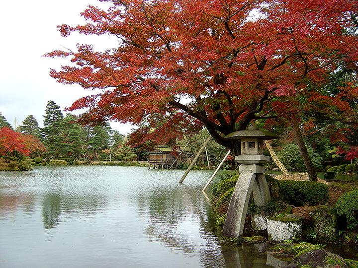 兼六園の中心部にある霞が池と徽軫(ことじ)灯篭
