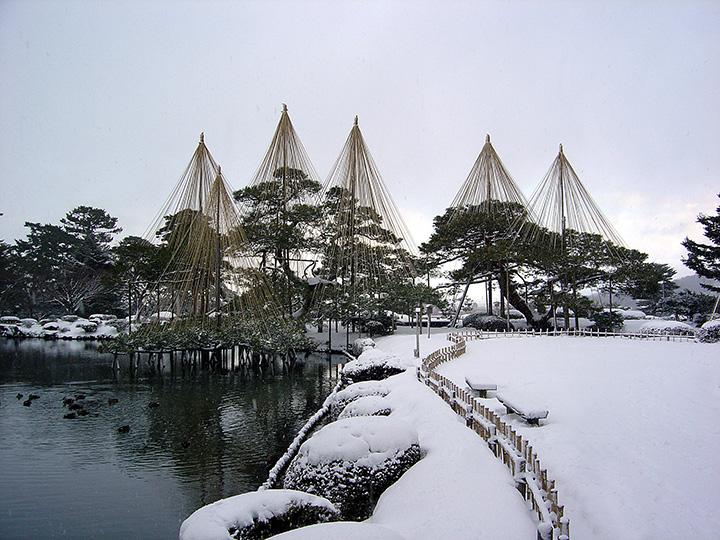 金沢の風物詩、雪吊りが美しい冬の兼六園