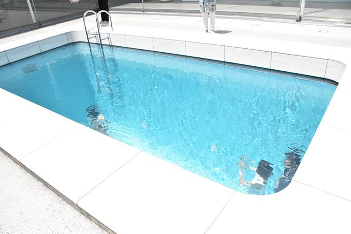 プール内部へは展示ゾーンから入れる。下からも水面を見上げてみよう