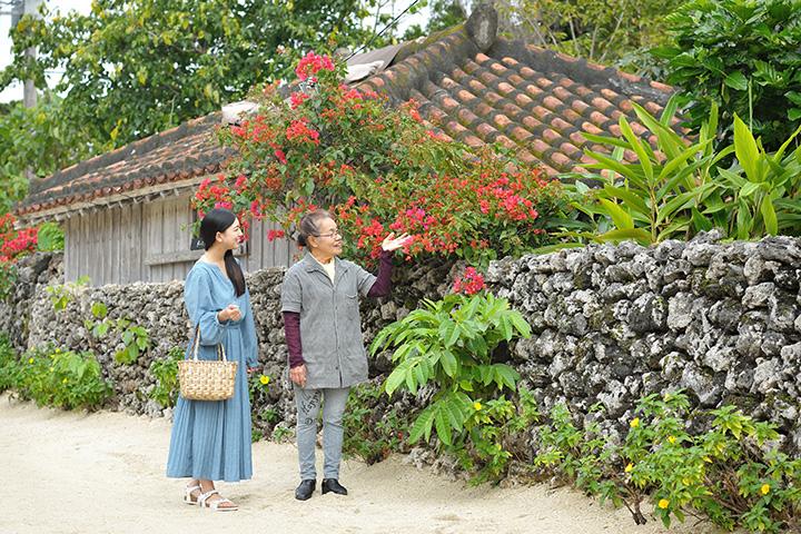 花咲く竹富島でのひととき