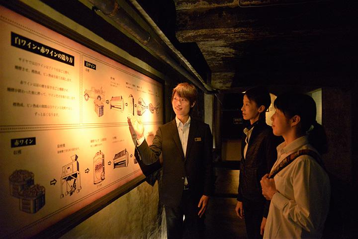 見学ツアーは所要約30~40分。ワインの作り方を学べる他、昔の醸造装置なども見られます
