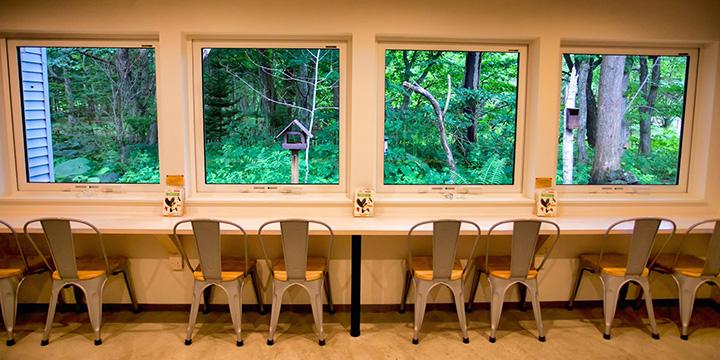 大きな窓が並ぶ、森に面したカウンター席