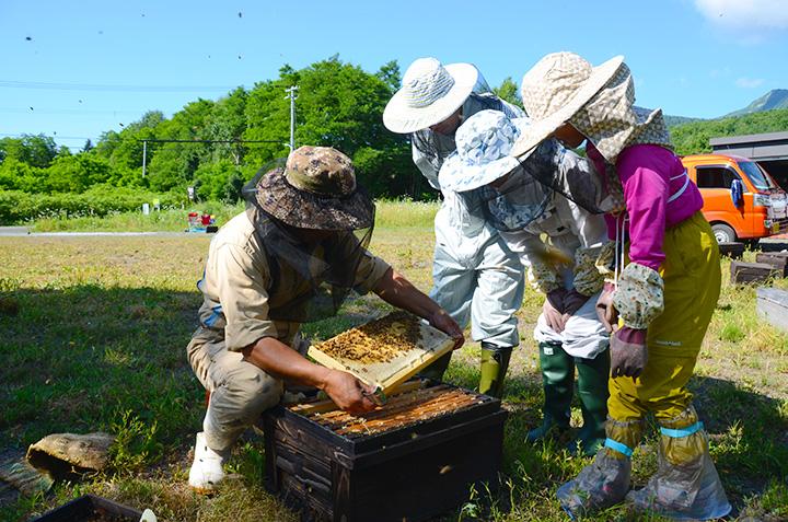 ミツバチを育てることも農業の一環
