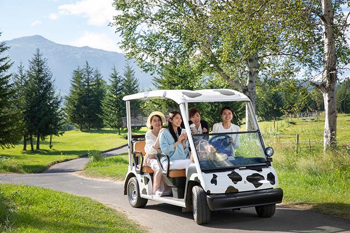 ファームエリアで園内ドライブが楽しめる「カートドライブ」