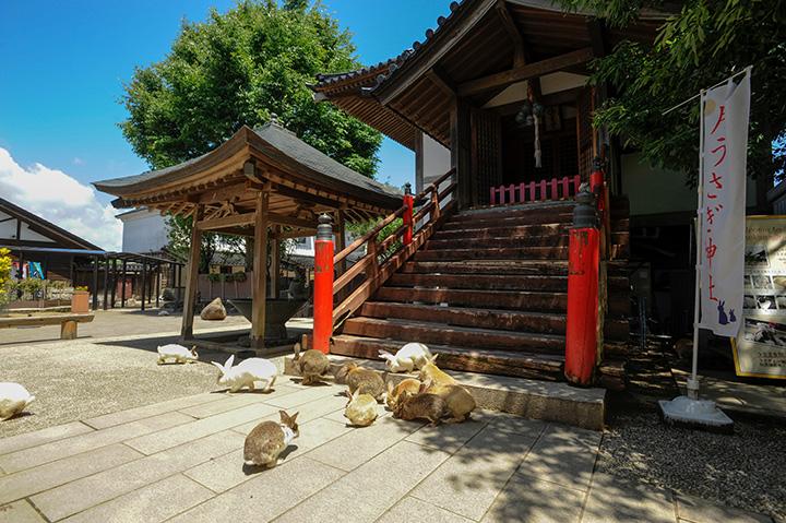 「うさぎ広場」に鎮座する「月うさぎ神社」