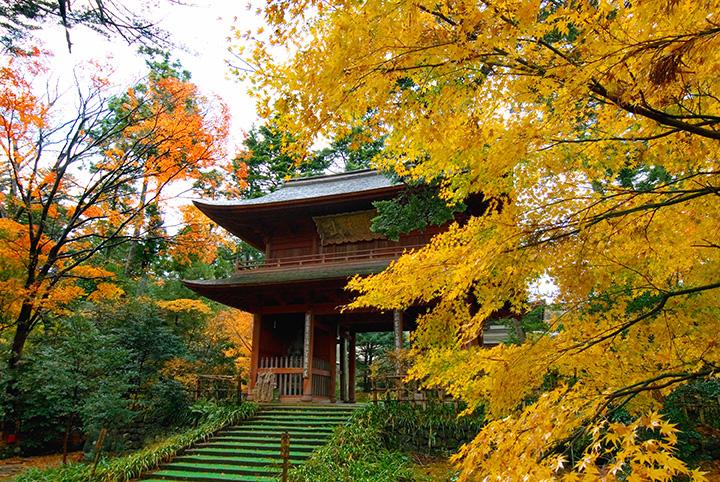 東香山 大乘寺(とうこうざん だいじょうじ)