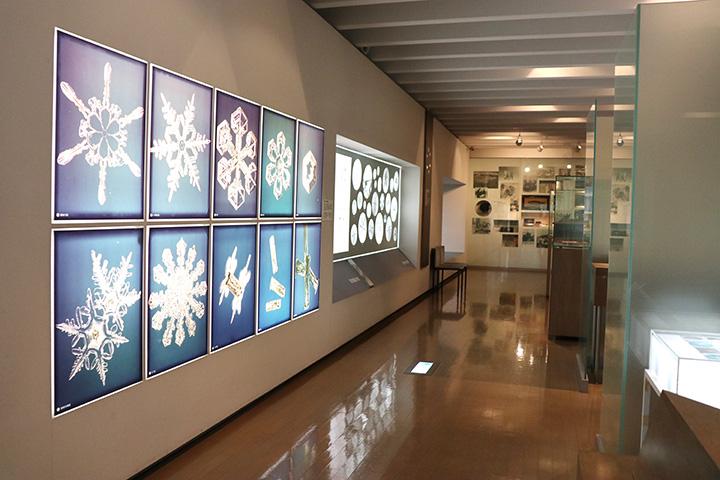 星状六花、扇型、ツヅミ型などと、雪の結晶の分類を分かりやすく展示