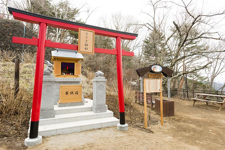 「うさぎ神社」。「たぬき茶屋」では、ウサギ形のお守りを販売しています